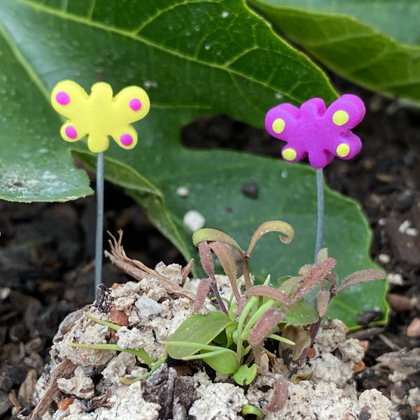 Mini Butterfly Garden Stakes - Purple - Individual