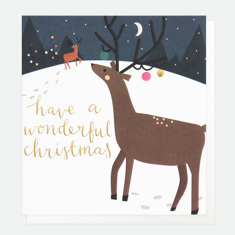 Have a Wonderful Christmas Card Pack