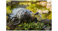 Load image into Gallery viewer, Recycled Metal Tortoise Sculpture | 3 Sizes Available