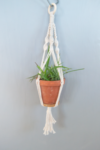 DIY Hanging Planters kit in size small.