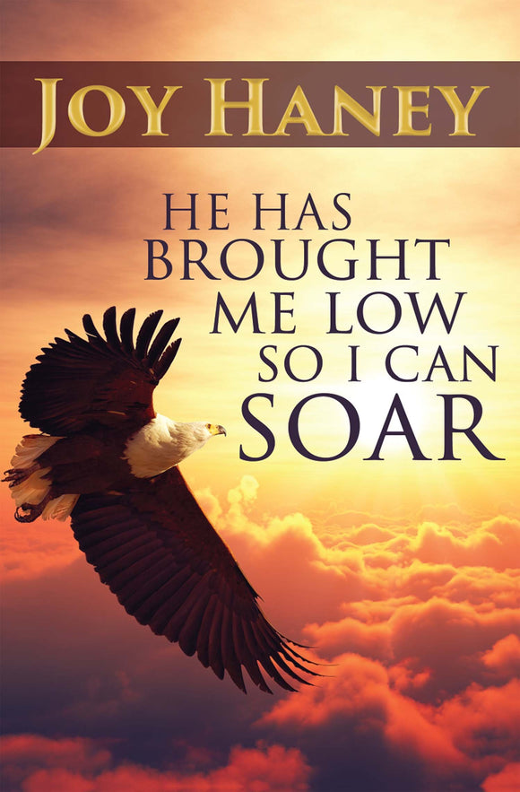 He Has brought Me Low so I Can Soar (eBook)