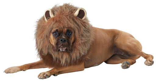 King Of Jungle Dog Costume - Holiday-Outfitters