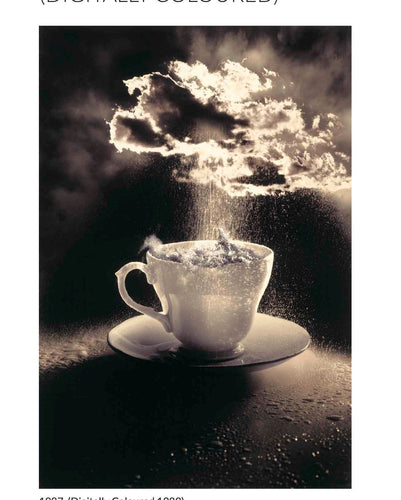 Storm in a Teacup a 364 piece puzzle