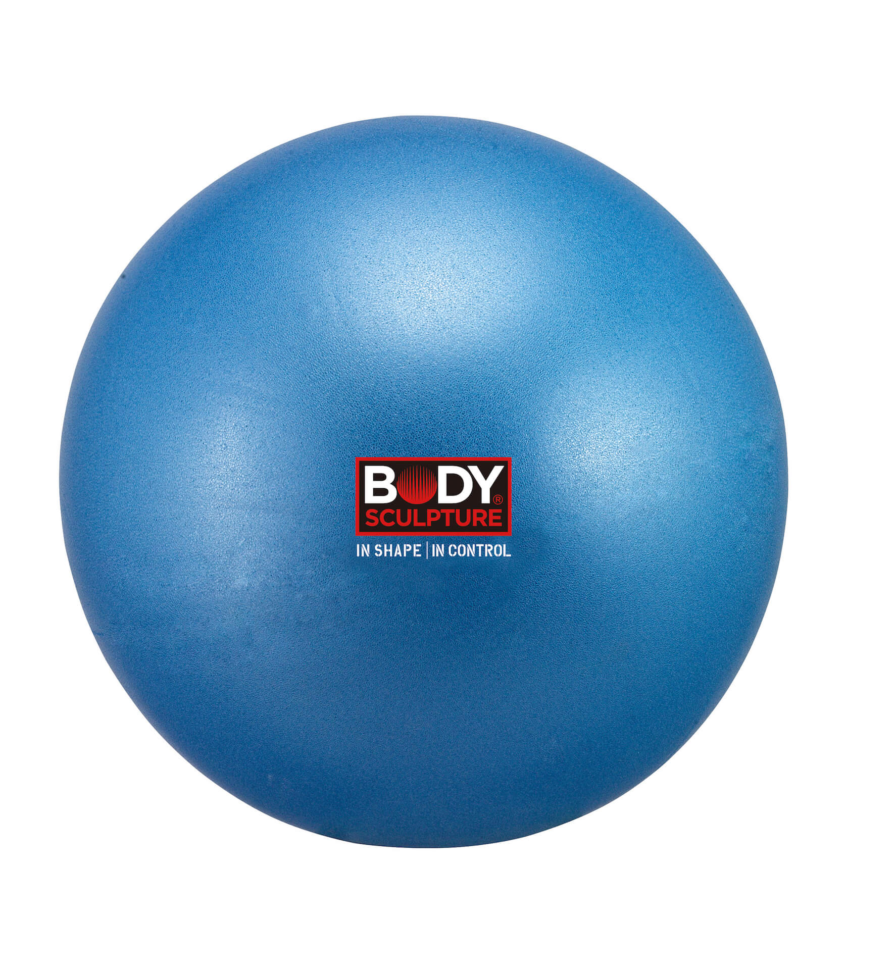 Mini Gym Ball (25cm)