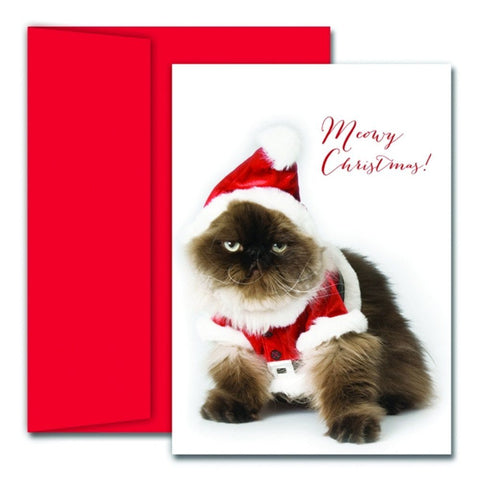 Cat Christmas Card Ideas