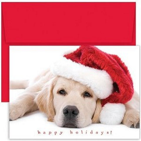 dog christmas cards - Dog Christmas Card Ideas