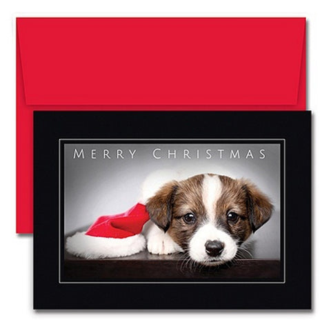 Cute Dog Christmas Cards