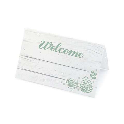 Winter Wonderland Plantable Place Cards - Mint, rustic place cards, winter place cards, winter placecards, green place cards, Eco-Friendly Favors