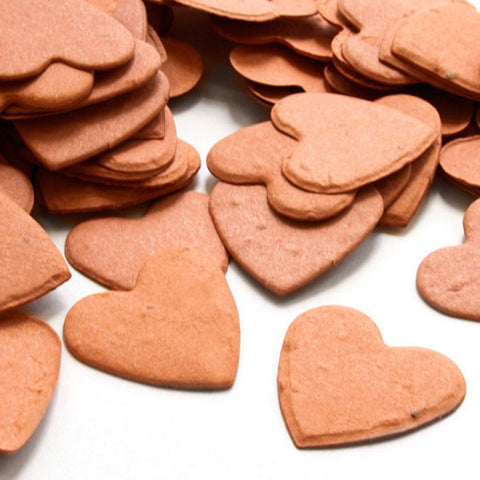 Heart Shaped Plantable Seed Confetti in Burnt Orange, orange wedding favors, heart shaped wedding favors, seed favors, plantable seed confetti, Eco-Friendly Favors