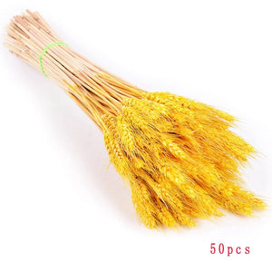 Rabbit Tail Grass Decorations (30 colors)