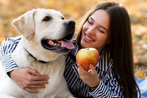 Can dogs eat apples - woman and dog