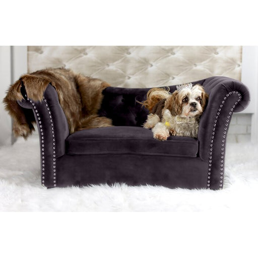Arwin Dog Sofa
