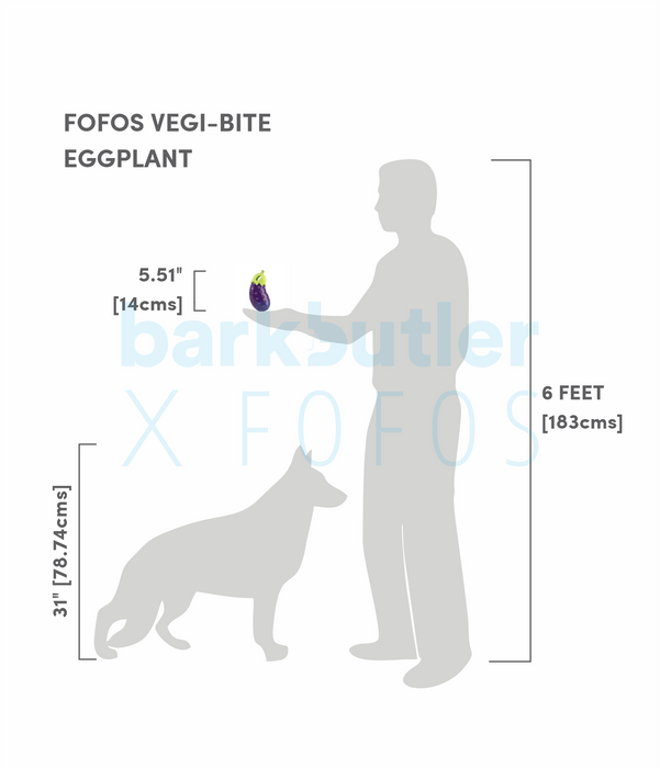 Fofos™: Vegi Bites Eggplant Toy (Floating Buddy)