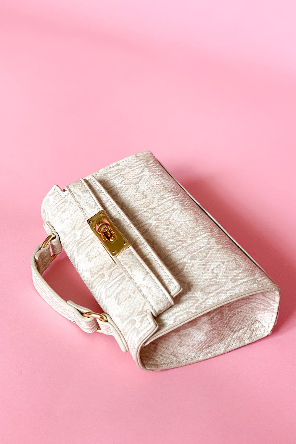 Neutral Snake Mini Bag