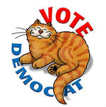 Vote DemoCat (Tote)