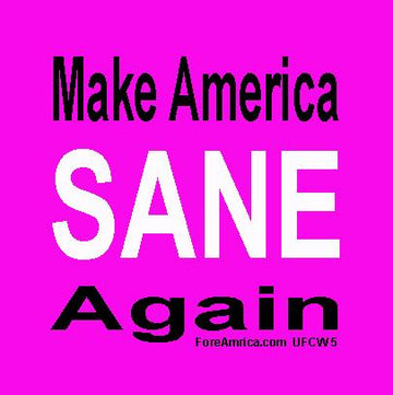 Make America Sane Again Magnet