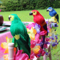 Tropical Bird Parrot Decorations