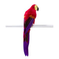 Red Tropical Bird Parrot Decorations