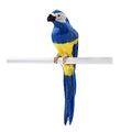 Blue Tropical Bird Parrot Decorations
