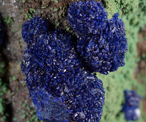Azurite from Metcalf Open Pit Mine, Morenci, Arizona, USA