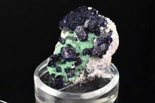 Load image into Gallery viewer, Azurite from Milpillas Mine, Cuitaca, Sonora, Mexico