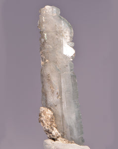 Celestite from Scofield Quarry, Maybee, Michigan