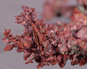 Copper from Itauz Mine, Dzhezkazgan, Karagandy Province, Kazakhstan