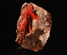 Load image into Gallery viewer, Crocoite from Red Lead Mine, Dundas, Tasmania, Australia