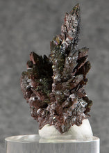 Load image into Gallery viewer, Descloizite from Berg Aukus,  Namibia