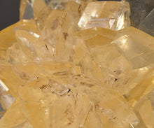Load image into Gallery viewer, Gypsum var. Selenite from Red River Spillway, Winnipeg, Manitoba, Canada