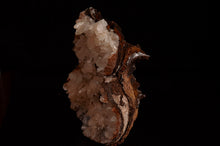 Load image into Gallery viewer, Hemimorphite from Mina Ojuela, Mapami, Durango, Mexico