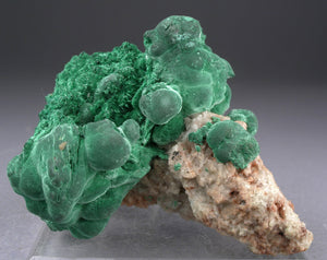 Malachite from Katanga, Shaba, D.R. Congo