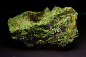 Miserite from North Wilson Mine, Wilson Springs, Garfield Co., Arkansas, USA
