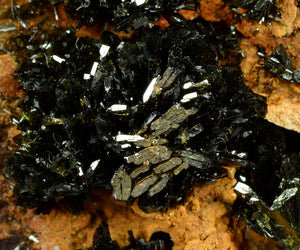 Olivenite from Majuba Hill, Pershing Co., Nevada, USA