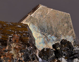 Pyrrhotite from Nikolaevskiy Mine, Dal'negorsk, Far-Eastern Region, Russia
