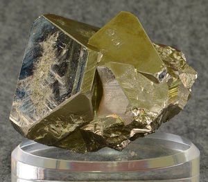 Pyrite from Huanzala Mine, Huanuco Dept., Peru