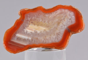 Quartz var. Agate from Agate Creek, Queensland, Austraia