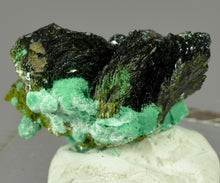 Load image into Gallery viewer, Volborthite from Milpillas Mine, Cuitaca, Sonora, Mexico