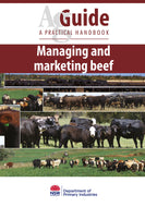 AG Beef managing bookcover