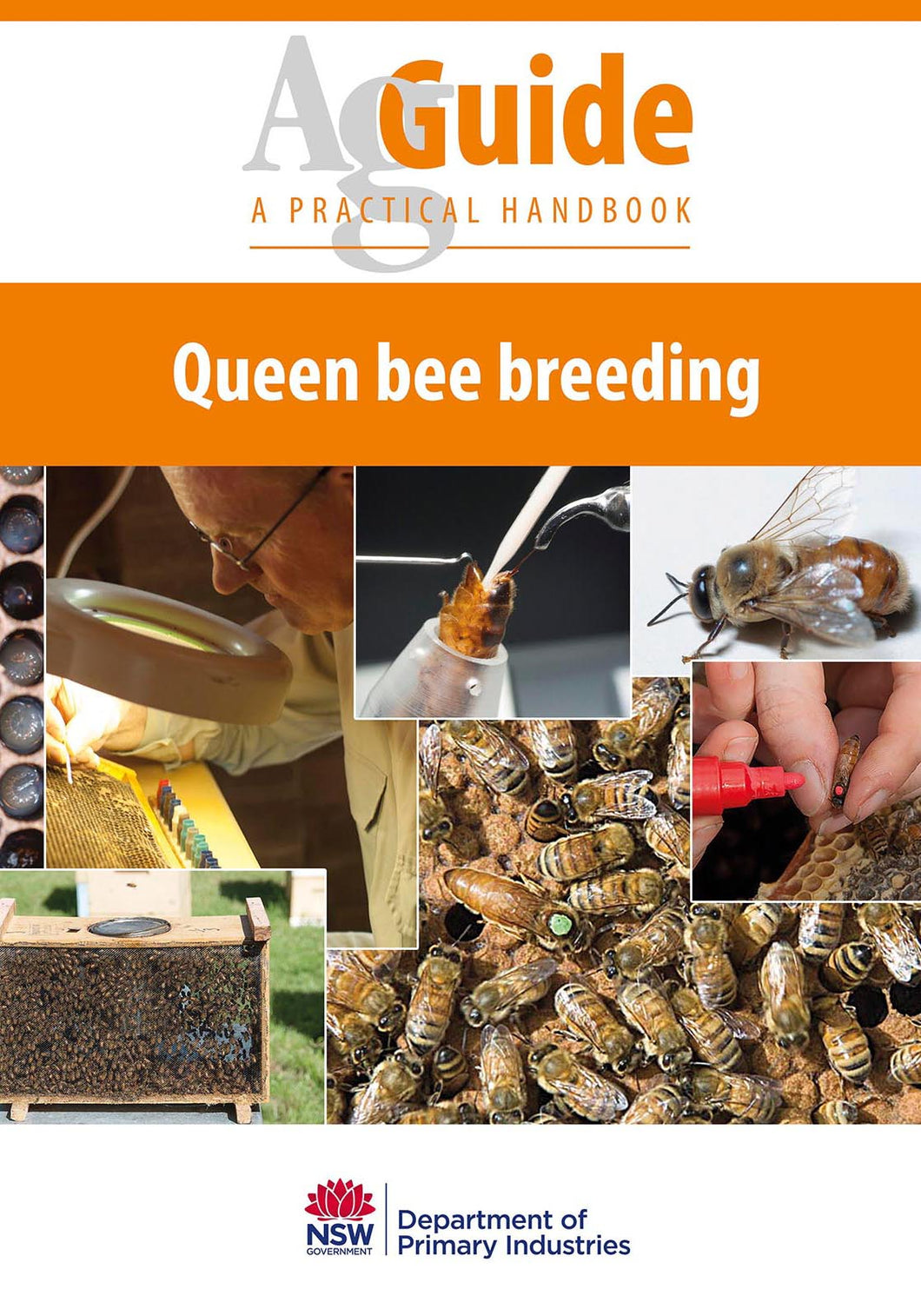AG Queen Bees bookcover