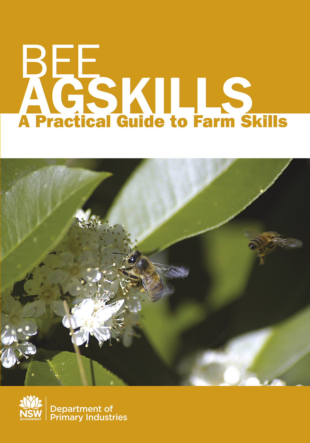 AS Bees bookcover
