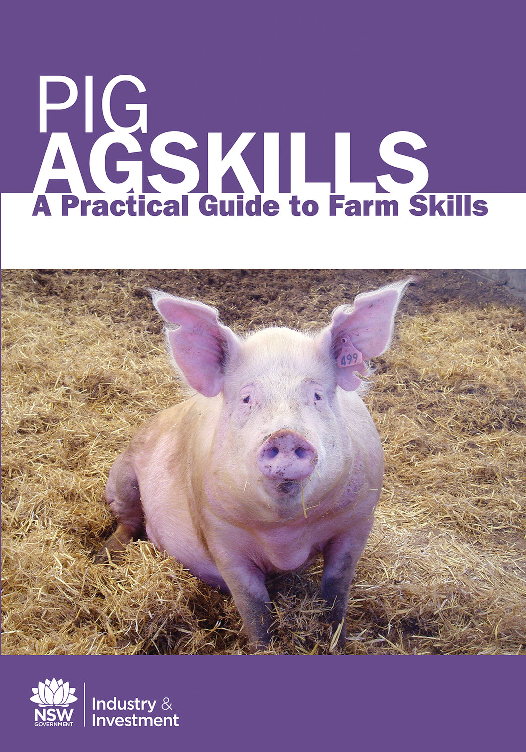AS Pigs bookcover