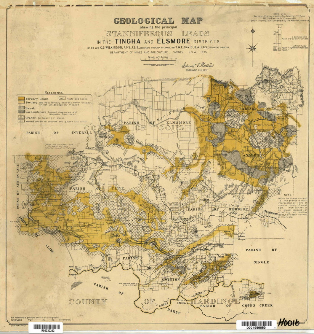 Image of Geological Map of Stanniferous Leads   1895  map