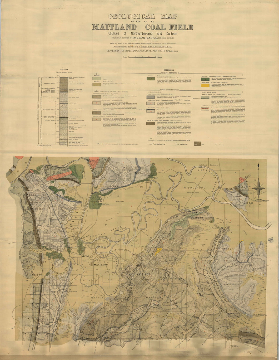 Image of Geological Map of the Maitland Coalfield   1902  map