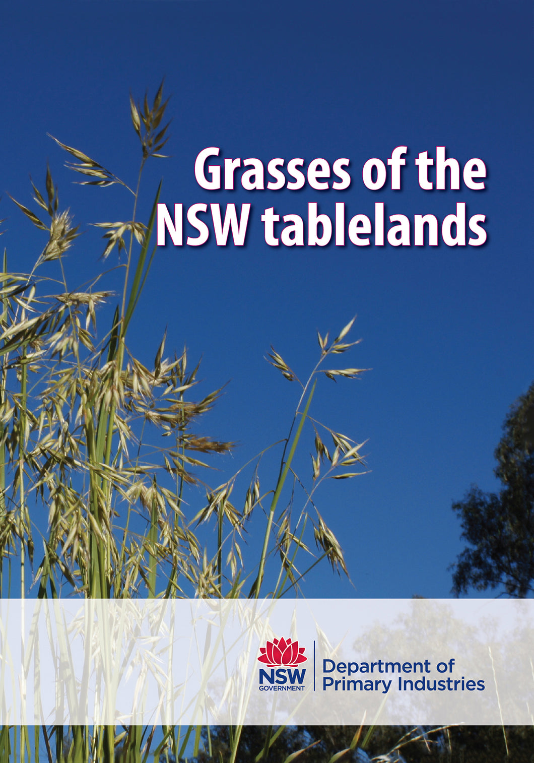 Grasses of NSW tablelands bookcover