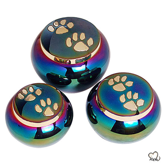Odyssey Pet Cremation Urn For Ashes in Rainbow - Small Size