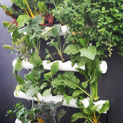 Hydrophonic Systems