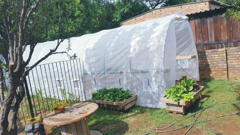 Portable Greenhouse Tunnel 10m x 3m x 2.5m