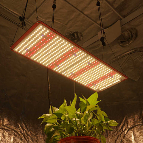 KingBrite 240W LED  Grow Light + UV & IR