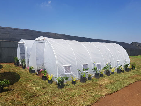 Portable Greenhouse Tunnel 6m x 3m x 2.5m